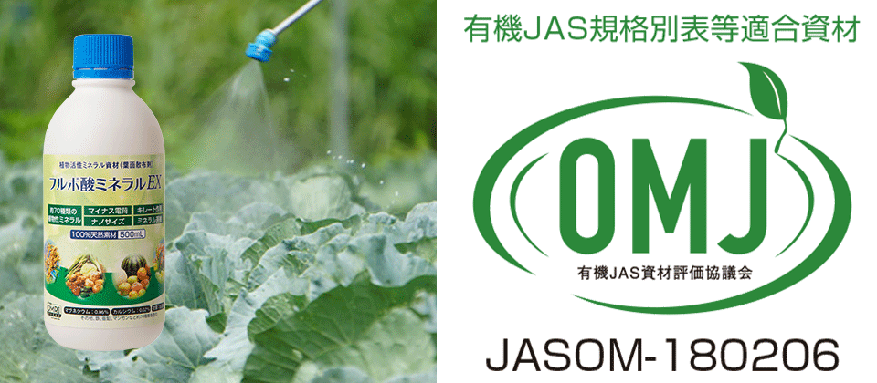 jas_02