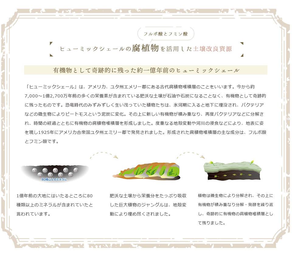 ヒューミックシェールの腐植物を活用した土壌改良資源