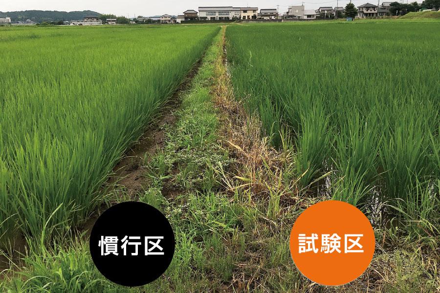 fieldtest_ine01